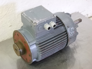 BAUER electric motor