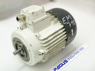 BRINKMANN electric motor